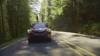 Subaru Love Spring Event TV Spot, 'Celebrate' [T2] - Thumbnail 1
