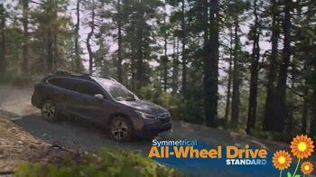 Subaru Love Spring Event TV Spot, 'Celebrate' [T2] - Thumbnail 4