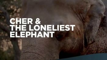 Paramount+ TV Spot, 'Cher & the Loneliest Elephant' Song by Cher - Thumbnail 9