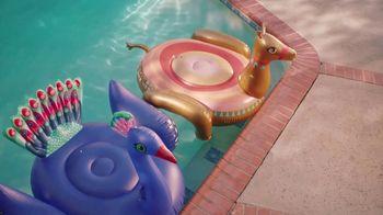 Orkin TV Spot, 'Pool Floaties' - Thumbnail 4
