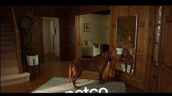PETCO TV Spot, 'It's What We'd Want if We Were Pets: High Quality Nutrition' - Thumbnail 10