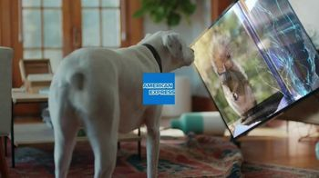 American Express TV Spot, 'Membership: Squirrel' - Thumbnail 1