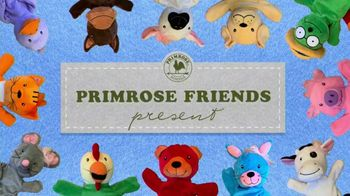 Primrose Schools TV Spot, 'Meet Ally' - Thumbnail 1