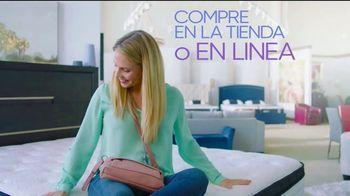 Rooms to Go Venta de Colchones TV Spot, 'NECTAR, Caspar y Purple' [Spanish] - Thumbnail 5