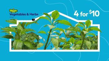 Lowe's Springfest TV Spot, 'Experience the Deals: Garden' - Thumbnail 3