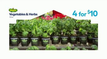 Lowe's Springfest TV Spot, 'Plants, Trimmers, Mowers and Mulch' - Thumbnail 3