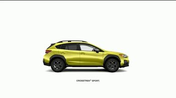 Subaru TV Spot, 'La marca más confiable' [Spanish] [T1] - Thumbnail 2