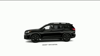 Subaru TV Spot, 'La marca más confiable' [Spanish] [T1] - Thumbnail 3