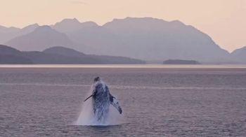 Visit Southeast Alaska TV Spot, 'It's Time to Expore: Hiking' - Thumbnail 3