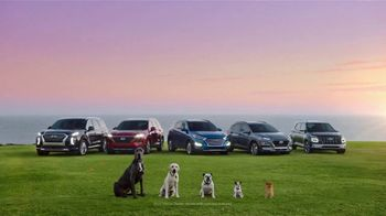 Hyundai TV Spot, 'Size of Adventure' [T2] - 422 commercial airings