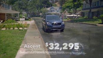 2021 Subaru Ascent TV Spot, 'Love Is Bigger Than Ever' [T2] - Thumbnail 8