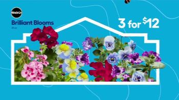 Lowe's Springfest TV Spot, 'Experience the Deals: Flowers' - Thumbnail 3
