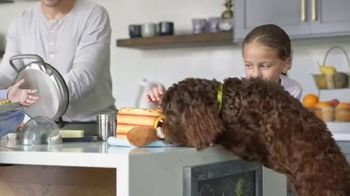 Chewy.com TV Spot, 'Feeling Good Comes First: 20%' - Thumbnail 6