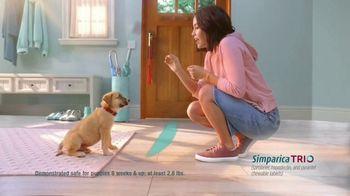 Simparica Trio TV Spot, 'Triple Protection' - Thumbnail 5