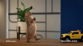 AAA TV Spot, 'Spokes-Gopher' - Thumbnail 3