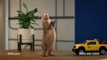 AAA TV Spot, 'Spokes-Gopher' - Thumbnail 5
