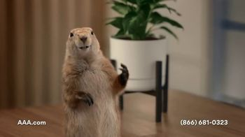 AAA TV Spot, 'Spokes-Gopher' - Thumbnail 6