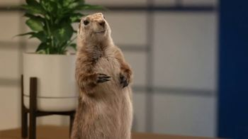AAA TV Spot, \'Spokes-Gopher\'