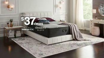 Ashley HomeStore Anniversary Sale TV Spot, 'Venta de colchones: 0% intereses y $300 Ashley Cash' [Spanish] - Thumbnail 5