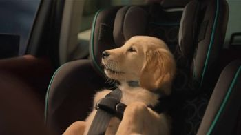 Subaru A Lot to Love Event TV Spot, 'Dog Tested: Honk' [T2]