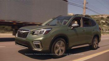 Subaru A Lot to Love Event TV Spot, 'Dog Tested: Honk' [T2] - Thumbnail 2