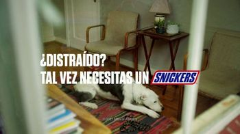 Snickers TV Spot, 'Parque' [Spanish] - Thumbnail 7