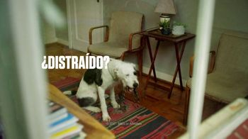 Snickers TV Spot, 'Parque' [Spanish] - Thumbnail 6