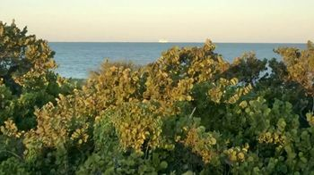 Greater Miami Convention & Visitors Bureau TV Spot, 'Adventure' - Thumbnail 2