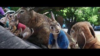 Peter Rabbit 2: The Runaway - Alternate Trailer 51