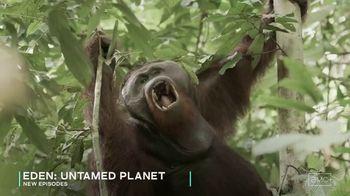 AMC+ TV Spot, 'Eden: Untamed Planet'