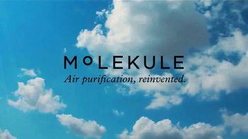 Molekule TV Spot, 'Air Quality Tip: Avoid Topping Off Gas Tanks' - Thumbnail 5
