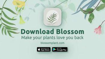 Blossom TV Spot, 'Full of Secrets' - Thumbnail 10