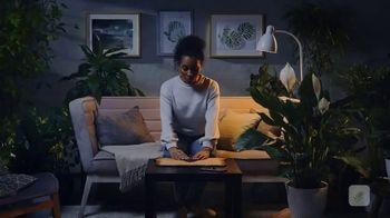 Blossom TV Spot, 'Full of Secrets'