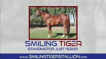 Smiling Tiger Stallion TV Spot, 'You Heard That Right'