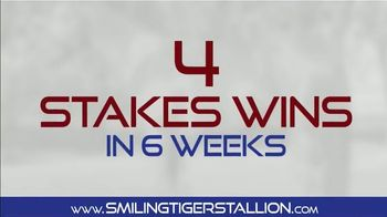 Smiling Tiger Stallion TV Spot, 'You Heard That Right' - Thumbnail 4