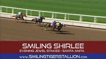 Smiling Tiger Stallion TV Spot, 'You Heard That Right' - Thumbnail 5