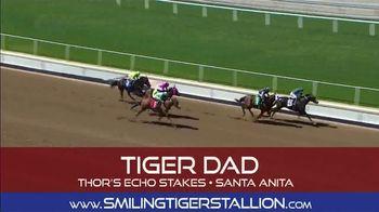 Smiling Tiger Stallion TV Spot, 'You Heard That Right' - Thumbnail 6