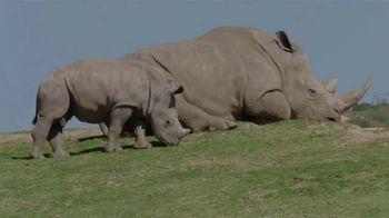San Diego Zoo Wildlife Alliance TV Spot, 'Changing Outcomes for Wildlife'