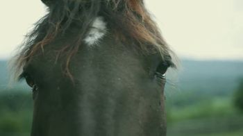 Winchester-Frederick County Convention & Visitors Bureau TV Spot, 'For Folks Who Fancy a Little Horsepower' - Thumbnail 2