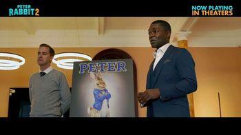 Peter Rabbit 2: The Runaway - Alternate Trailer 44