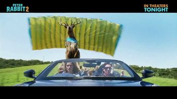 Peter Rabbit 2: The Runaway - Alternate Trailer 36
