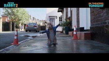 Peter Rabbit 2: The Runaway - Alternate Trailer 40