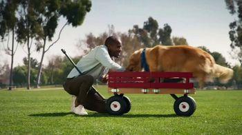 Blue Buffalo Bits TV Spot, 'HGTV: Canine Protraits' - Thumbnail 6