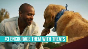 Blue Buffalo Bits TV Spot, 'HGTV: Canine Protraits' - Thumbnail 7