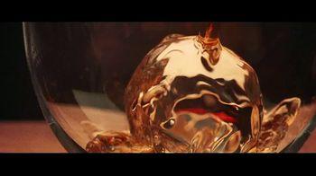 Dewar's TV Spot, 'Changing Times' Song by Jarreau Vandal