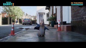 Peter Rabbit 2: The Runaway - Alternate Trailer 32