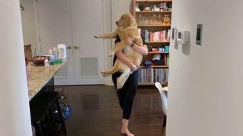 Bounce Pet Hair & Lint Guard TV Spot, 'Pets Are Gonna Shed' - Thumbnail 6