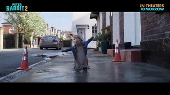 Peter Rabbit 2: The Runaway - Alternate Trailer 35