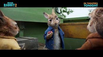 Peter Rabbit 2: The Runaway - Alternate Trailer 42