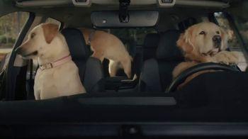 Subaru Outback TV Spot, 'Dog Tested: No Pets Allowed' [T2] - Thumbnail 5